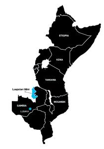 Sambian Luapulan läänin lisäksi suomalaiset ovat kehittäneet maataloutta Tansanian, Kenian, Mosambikin ja Etiopian maaseudulla. Tavoitteena on ollut vähentää köyhyyttä ja parantaa ruokaturvaa. Viljelijät ovat saaneet koulutusta ja mahdollisuuden myydä tuotteitaan markkinoilla. Paikoin on keskitytty tukemaan erityisesti naisia, jotka useimmissa perheissä vastaavat ruoantuotannosta. Viime vuonna laajamittaiset maaseudun kehittämisohjelmat päättyivät Sambian Luapulan lisäksi Tansanian Liwalessa ja Newalassa sekä Mosambikin Zambeziassa. Osa ohjelmista jatkaa vielä seuraavat pari vuotta. Muiden avunantajamaiden tavoin Suomikin pohtii parhaillaan tehokkainta tapaa tukea maaseudun asukkaiden työllistymistä ja kestävää toimeentuloa.