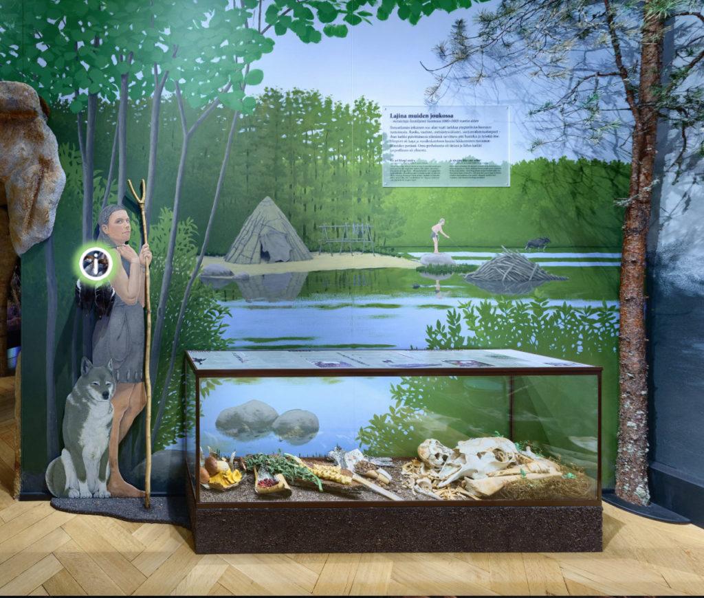 Museokuva, jossa muinaisiin vaatteisiin pukeutunut nainen ja lasivitriinissä kivikautisia esineitä.